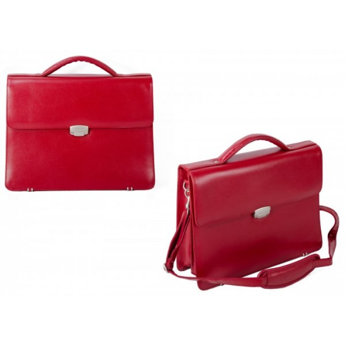 EX-50 RED LEATHER BUSINESS CASE